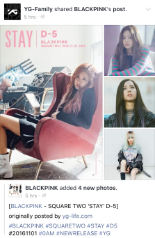 161027-ygfamily-facebook-d-5-blackpink-stay-cap