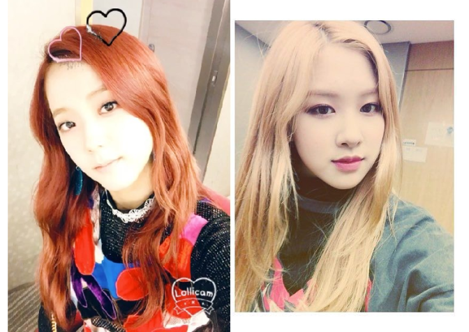 [INSTAGRAM/TRANS] 161111 Jisoo & Rosé Ask How You Like Their Performance on MCountdown + Lisa's