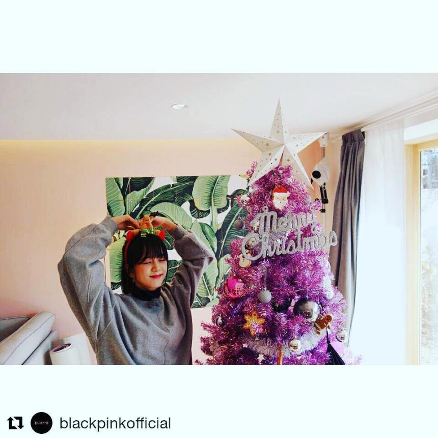 171226 suhyooncho_yg bphouse jisoo blackpinkofficial repost