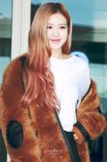 180908 incheon airport rose_1