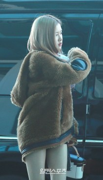 180908 incheon airport rose_10
