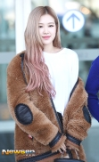 180908 incheon airport rose_2