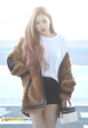 180908 incheon airport rose_3