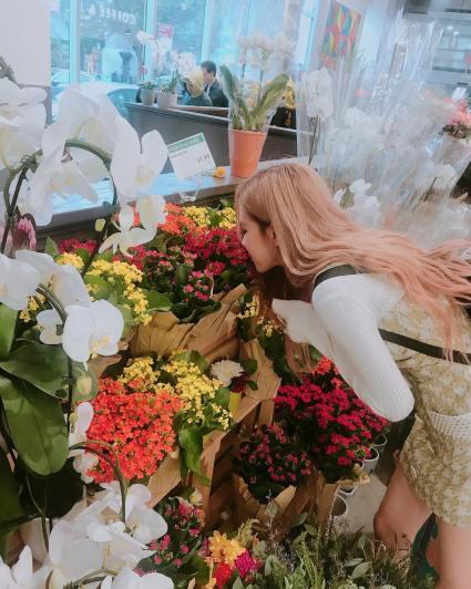 180913 roses_are_rosie 4 supermarket flowers 1