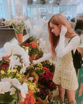 180913 roses_are_rosie 4 supermarket flowers 2