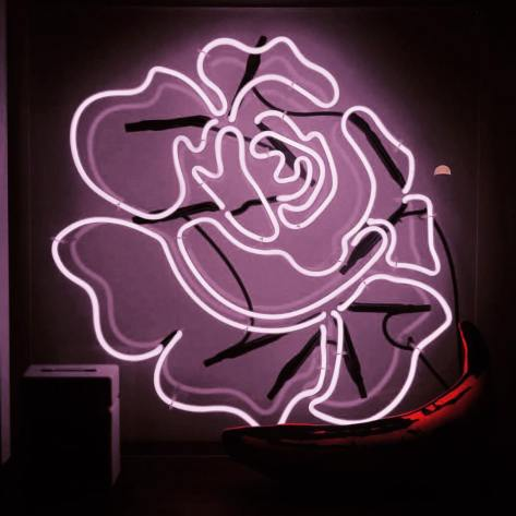 181019 roses_are_rosie 2